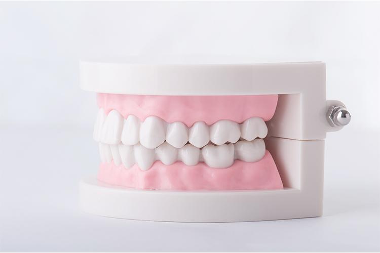 しっかり噛めて使える入れ歯